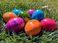 Es ist Ostern - Zeit für dein